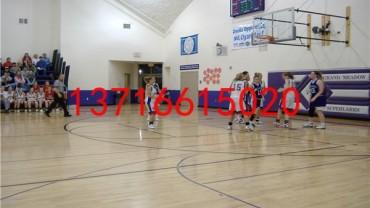 菏泽市篮球专用木地板一般多少钱_欢迎咨询